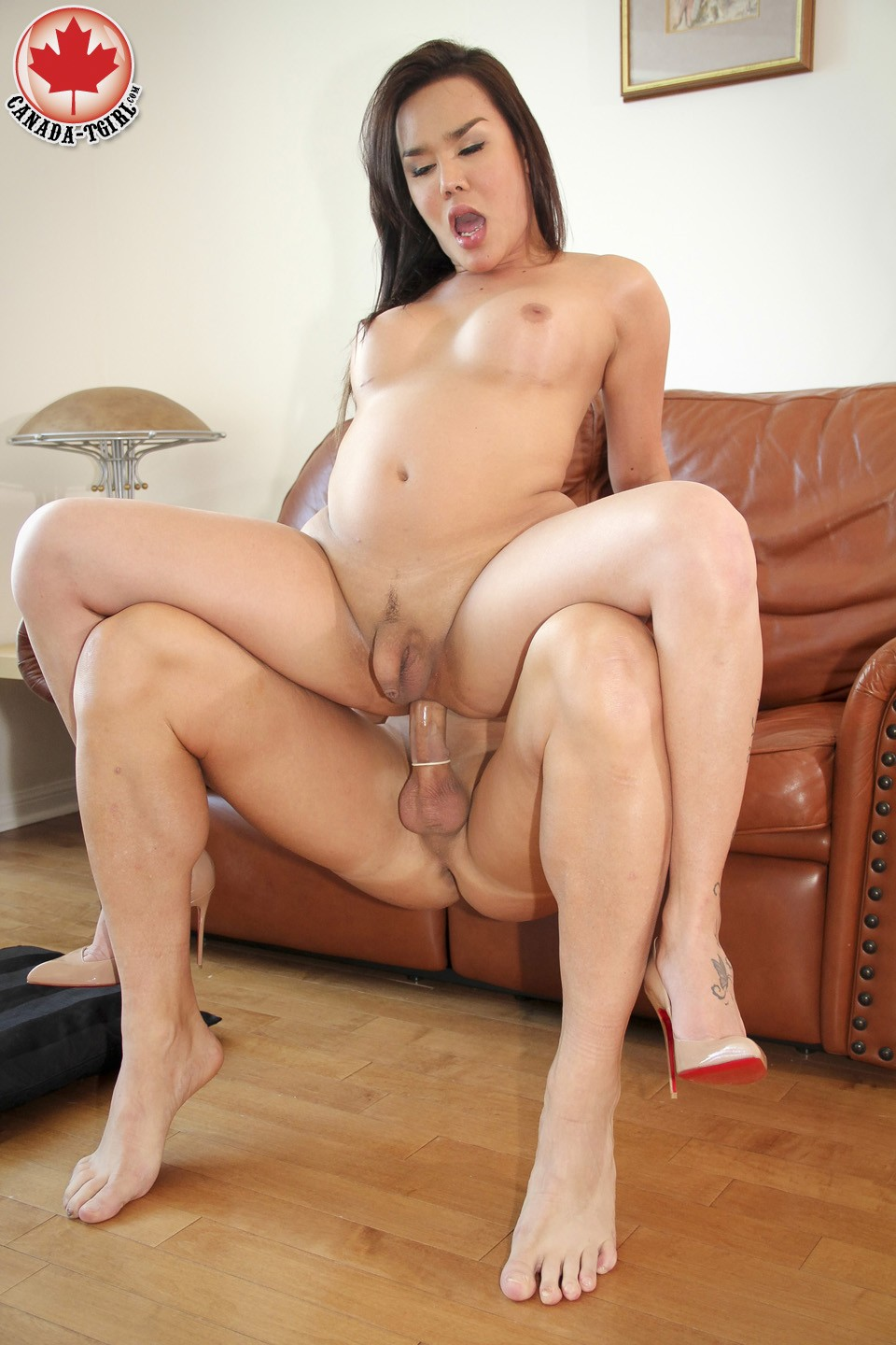 tranny and girl sex