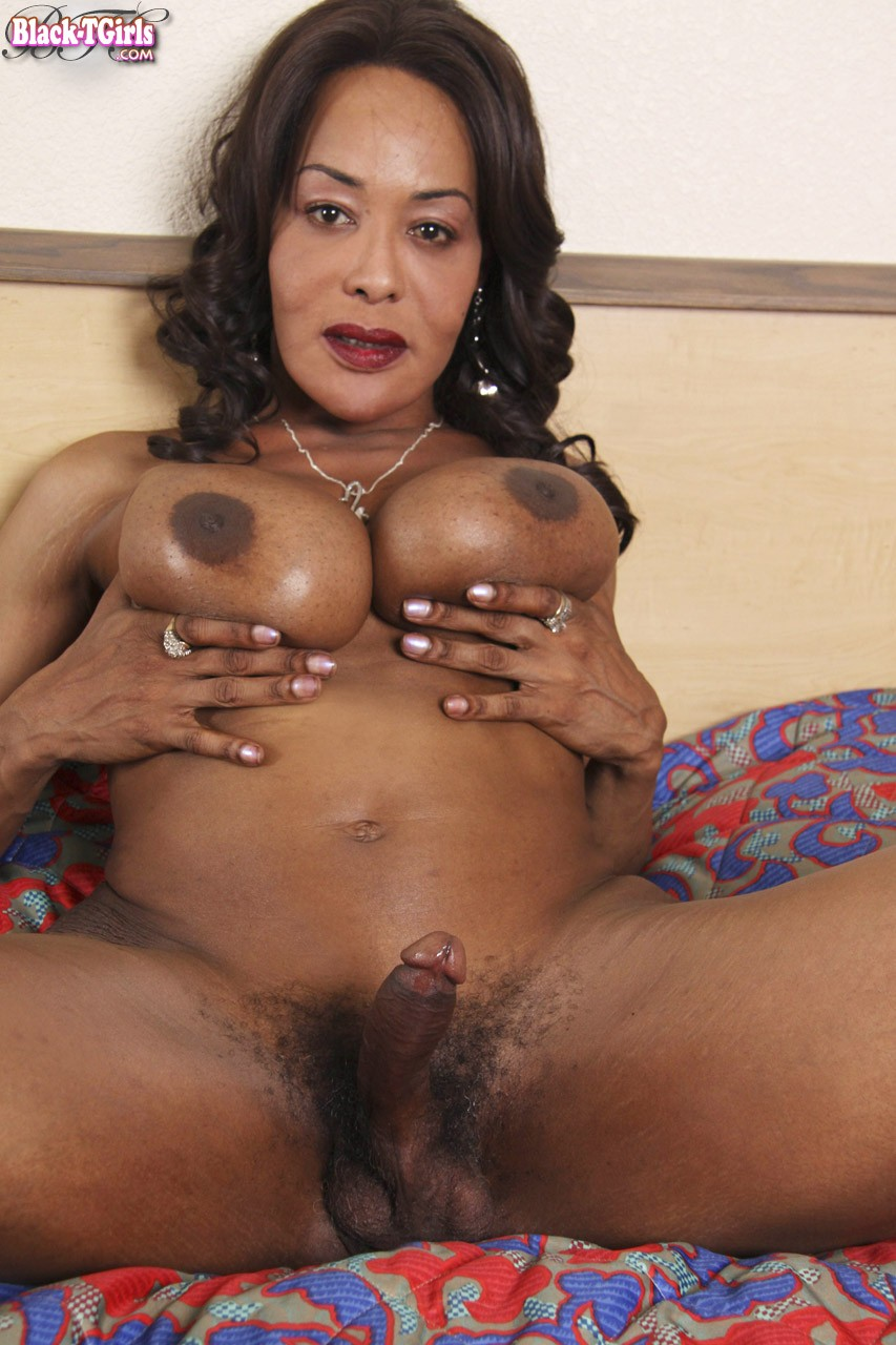 free black tgirls