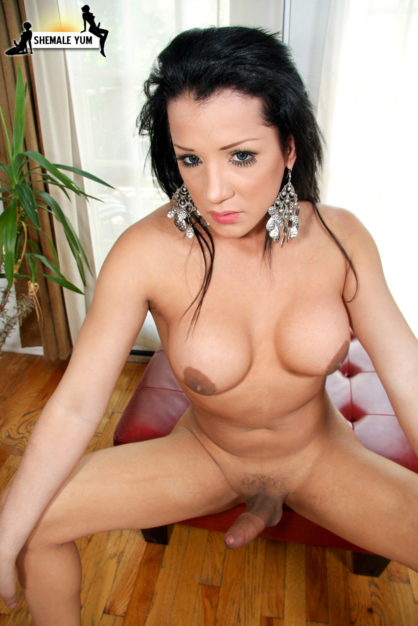Are Tranny model gallery state