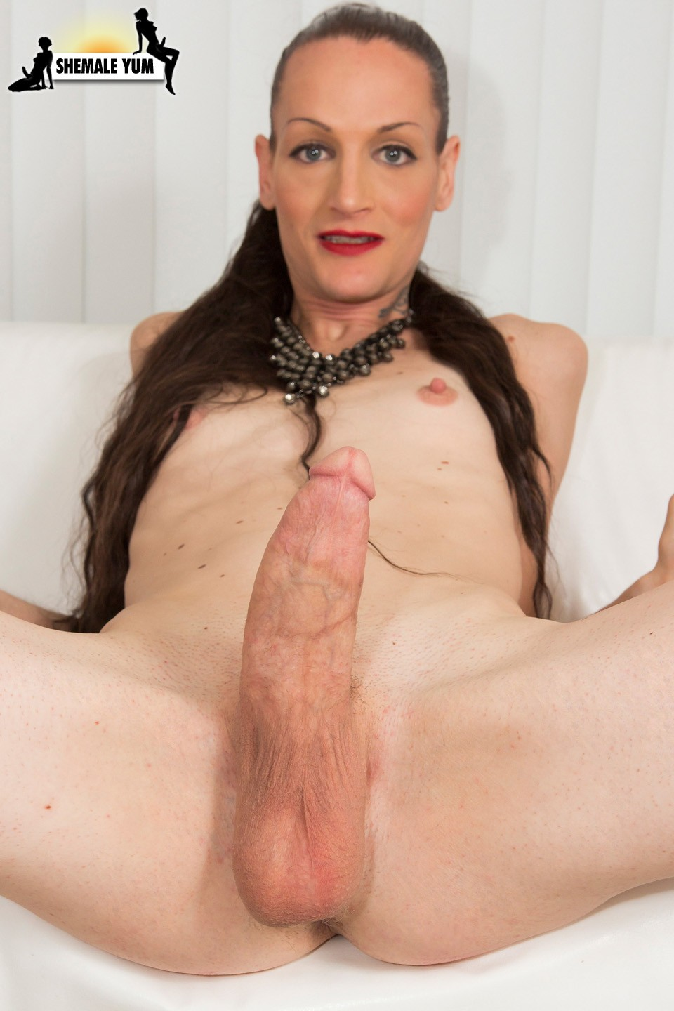 Spicy Tranny Hd Tube Free Porn Free Movies Of Hot